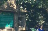 Bali, Monkey Forest