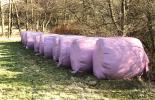 Silage-Ballen in rosa Plastik