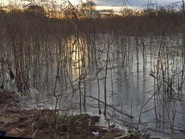 ein zugefrorener Teich