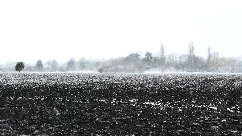 Diesig angeschneite Landschaft