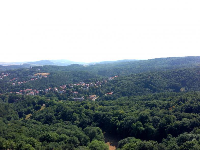 Blick über den Thüringer Wald vom Turm in der Wartburg