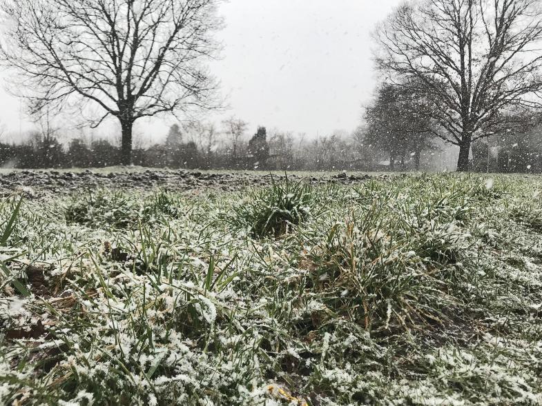 Andeutung von Schnee