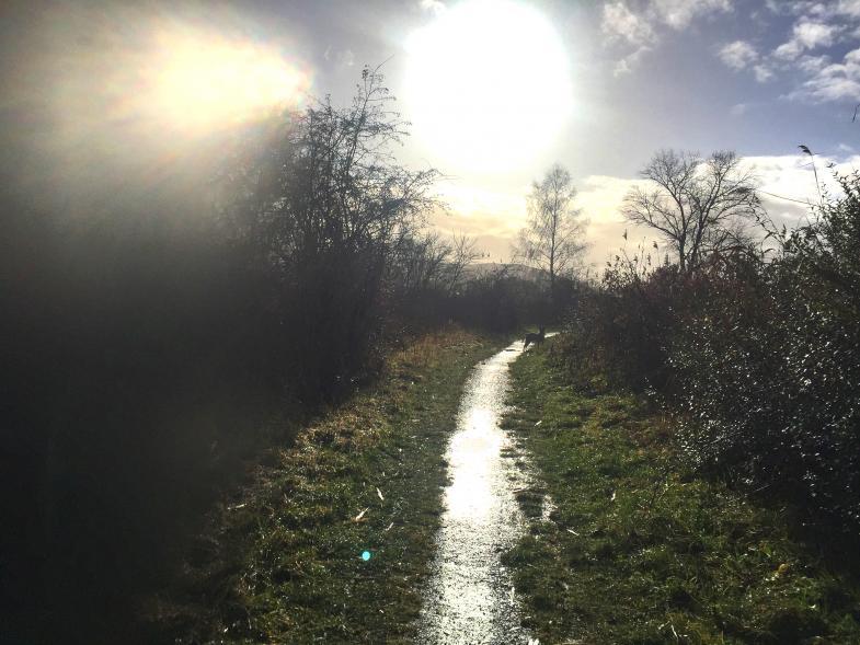 Weg an der Werra in grellem Licht