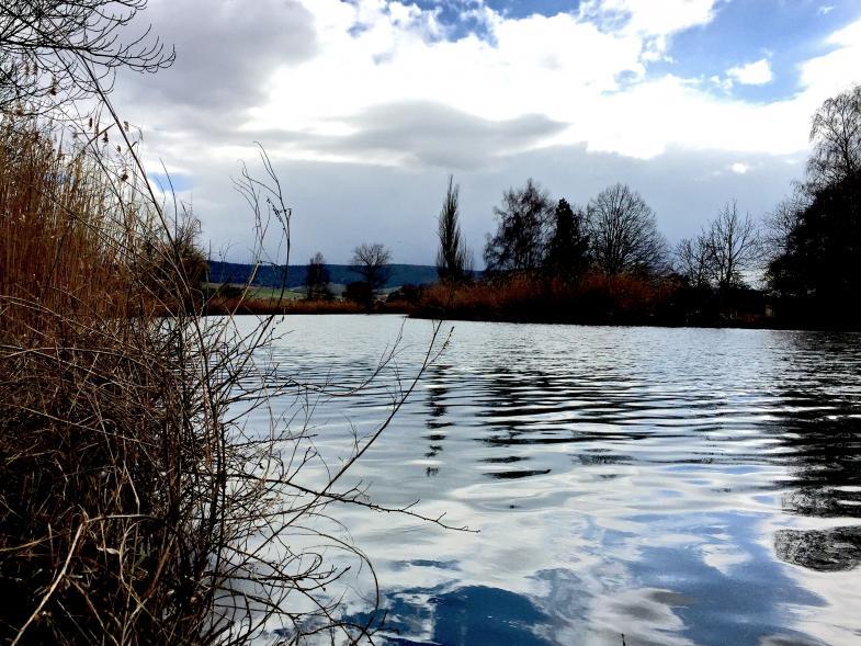 Eine Flusslandschaft - die Werra bei Heringen