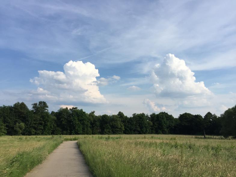 Ein Feldweg bei Kronberg