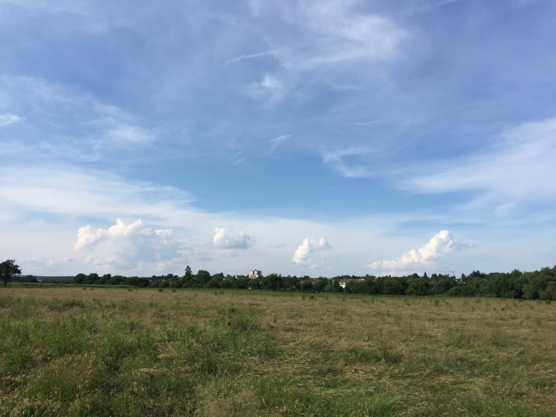 Blick übers Feld bei Kronberg