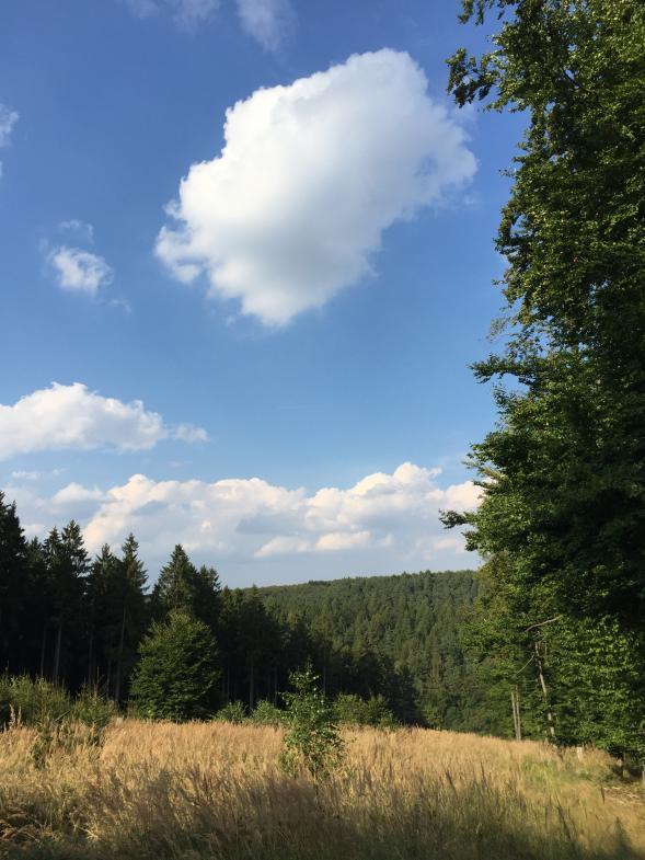 Wolke über bewaldeten Hügeln