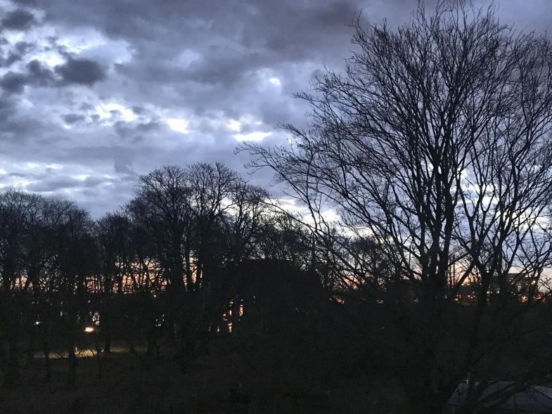 Sonnenaufgang hinter Bäumen