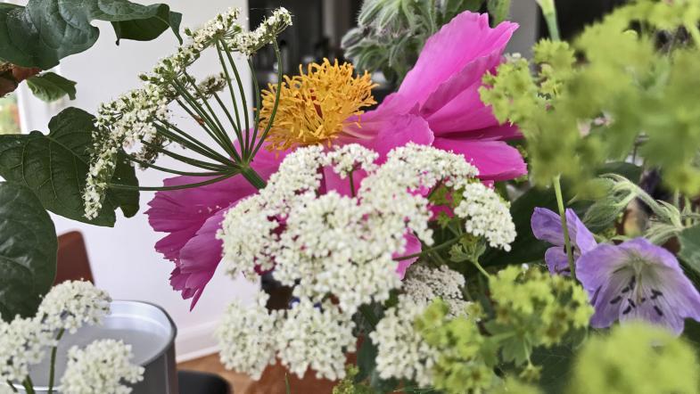 Ein Blumenstrauss aus dem Garten